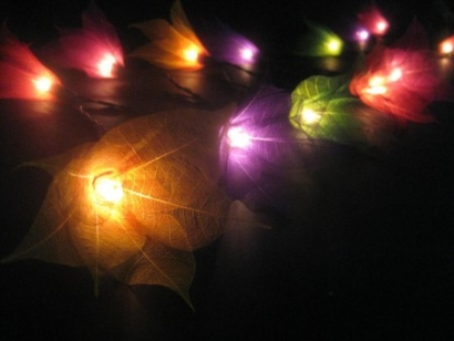Multi-Coloured  Liladee Flower - Fairy Lights