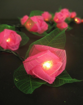 Pink Roses String Light