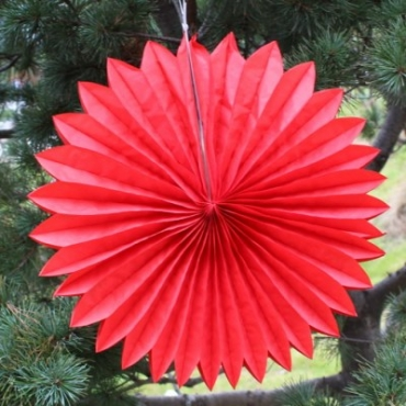 Red daisy lantern