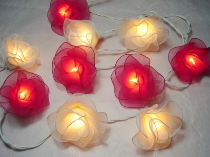 Red and White Rose string light